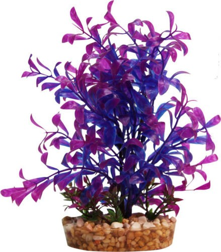Aqua One Blue Hygrophila With Gravel Base - Medium (28191)