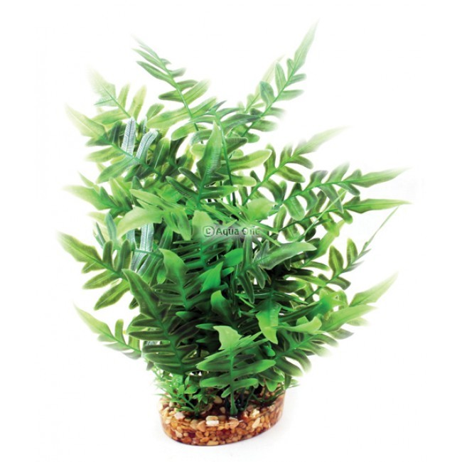 Aqua One Green Fern With Gravel Base - Large (28208)