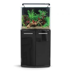 Aqua One AquaNano 60 Bow Front Aquarium Combo