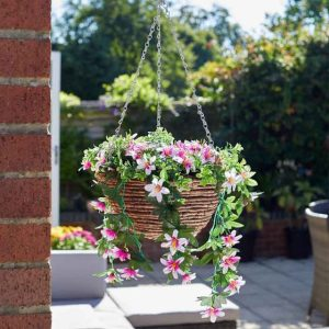 Smart Garden Easy Basket - Star Gazing Lilies