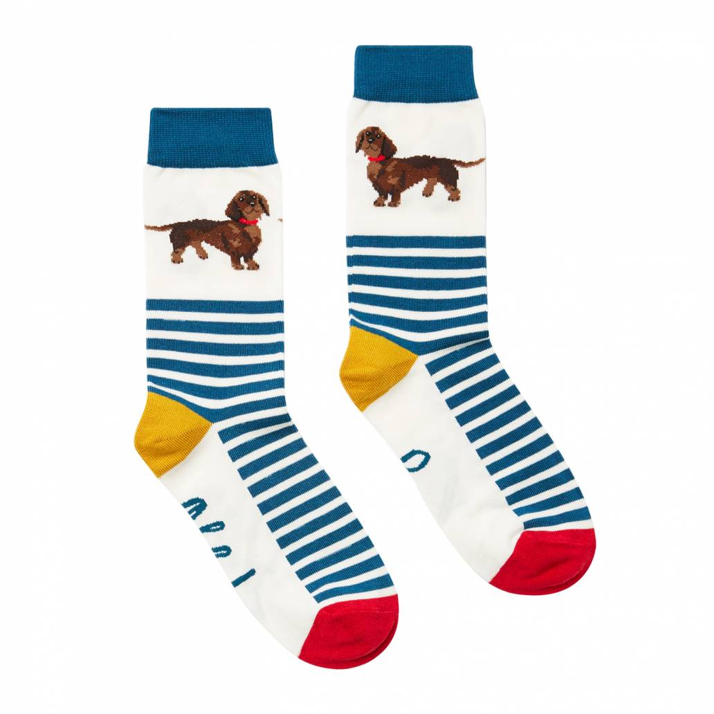Joules Ladies Brilliant Bamboo Socks - Navy Dachshund - UK 4-8