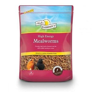 Harrisons High Energy Mealworms 500g Pouch