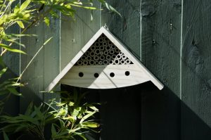 Greenkey - Apex Insect House