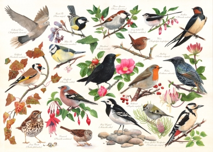 HOP Jigsaw The Merridale Collection Birds In My Garden 1000 piece