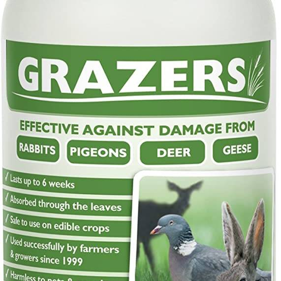 Grazers G1 Rabbits/Deer Concentrate 375ml