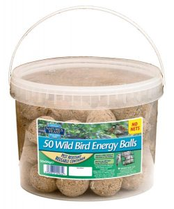 Natures Feast 50 Energy Suet Balls in Tub