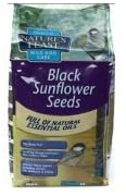 Natures Feast Premium Black Sunflowers 1.25kg