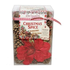 Enchante Christmas Spice Scented Pinecone Gift Box