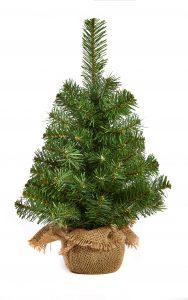 Premier 45cm Burlap Tree
