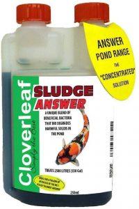 Cloverleaf Sludge Answer 250ml